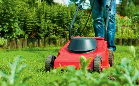 5 Інструментів для стрижки газону